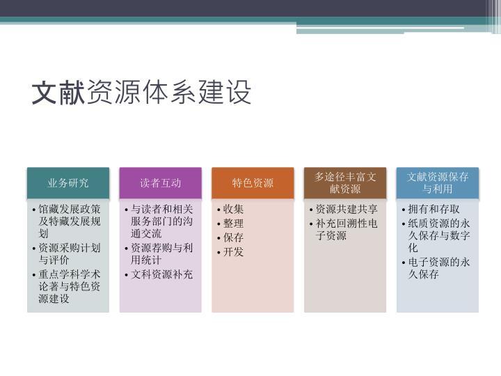 文献资源体系建设