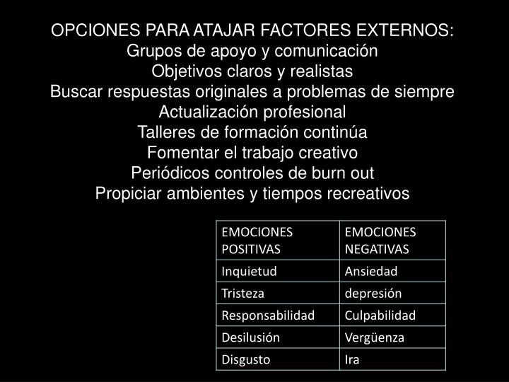 OPCIONES PARA ATAJAR FACTORES EXTERNOS: