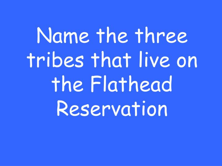 Name the three tribes that live on the Flathead Reservation