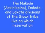 the nakoda assiniboine dakota and lakota divisions of the sioux tribe live on which reservation