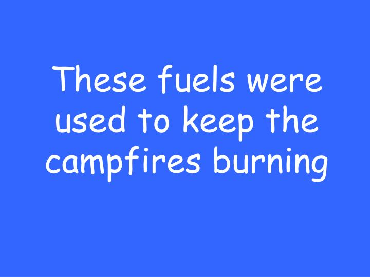 These fuels were used to keep the campfires burning