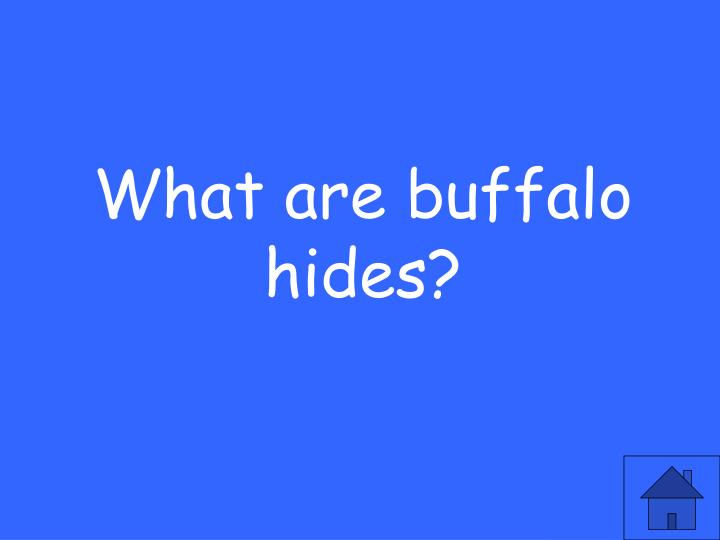 What are buffalo hides?