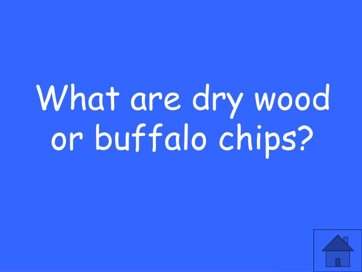 What are dry wood or buffalo chips?