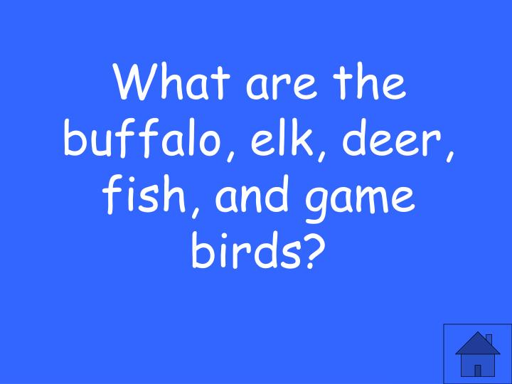 What are the buffalo, elk, deer, fish, and game birds?