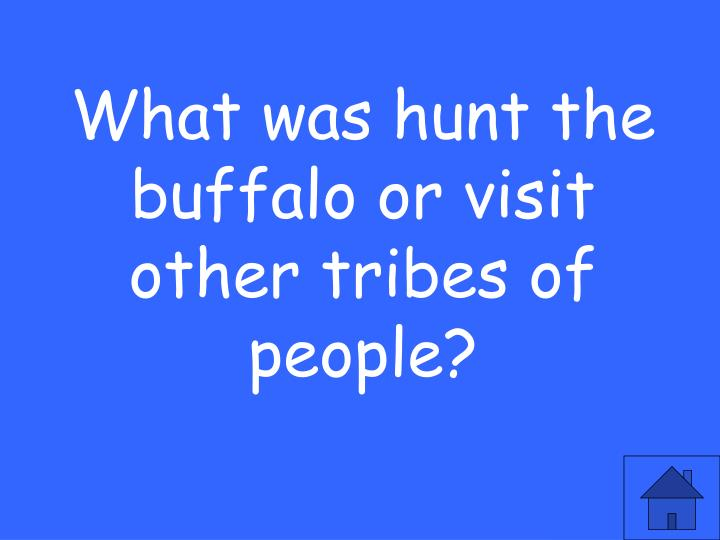 What was hunt the buffalo or visit other tribes of people?