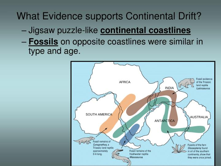 essay evidence supports theory continental drift and plate Start studying continental drift, sea floor spreading, plate tectonics test learn vocabulary, terms, and more with flashcards, games, and other study tools.