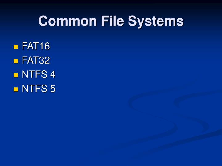 Common File Systems