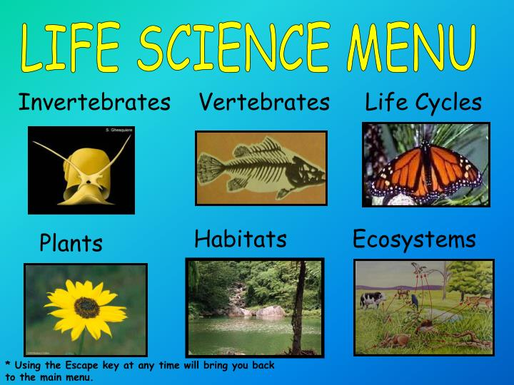 LIFE SCIENCE MENU