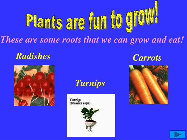 Plants are fun to grow!
