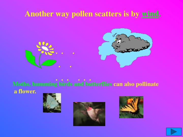 Another way pollen scatters is by