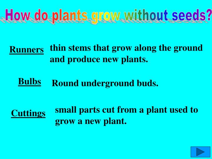 How do plants grow without seeds?