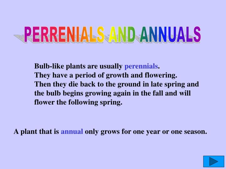 PERRENIALS AND ANNUALS
