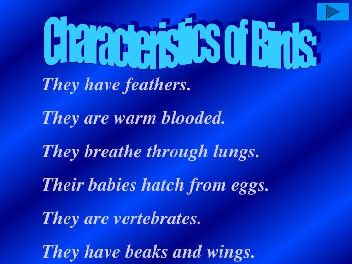 Characteristics  of  Birds: