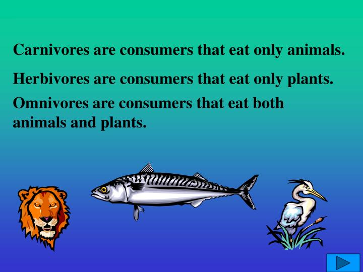 Carnivores are consumers that eat only animals.