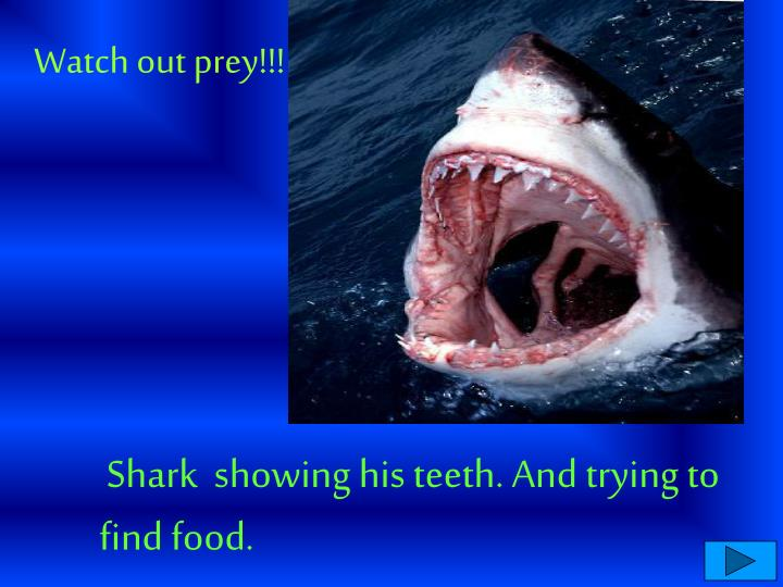 Watch out prey!!!