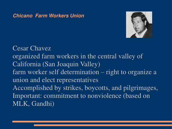 Chicano  Farm Workers Union