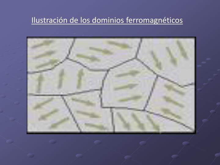 Ilustración de los dominios ferromagnéticos