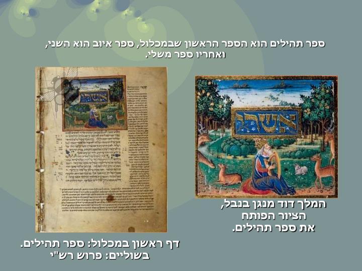 ספר תהילים הוא הספר הראשון שבמכלול, ספר איוב הוא השני, ואחריו ספר משלי.