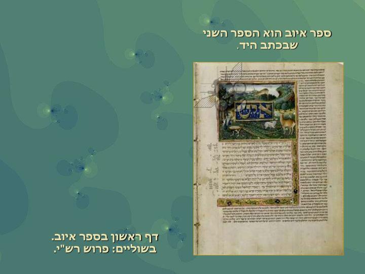 ספר איוב הוא הספר השני שבכתב היד