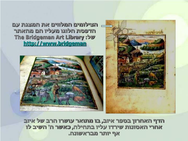 הצילומים המלווים את המצגת עם הדפסת הלוגו מעליו הם מהאתר של: