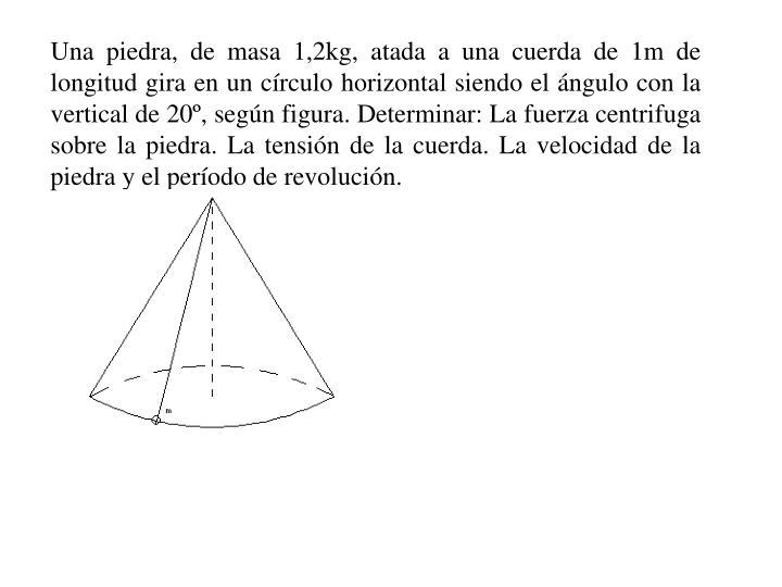 Una piedra, de masa 1,2kg, atada a una cuerda de 1m de longitud gira en un círculo horizontal siendo el ángulo con la vertical de 20º, según figura. Determinar: La fuerza centrifuga sobre la piedra. La tensión de la cuerda. La velocidad de la piedra y el período de revolución.