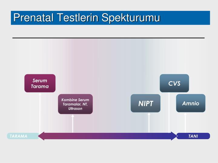 Prenatal Test