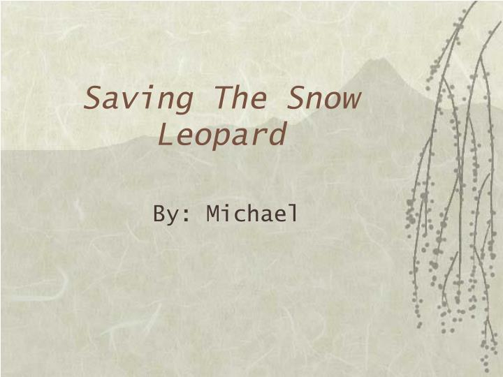 Saving the snow leopard