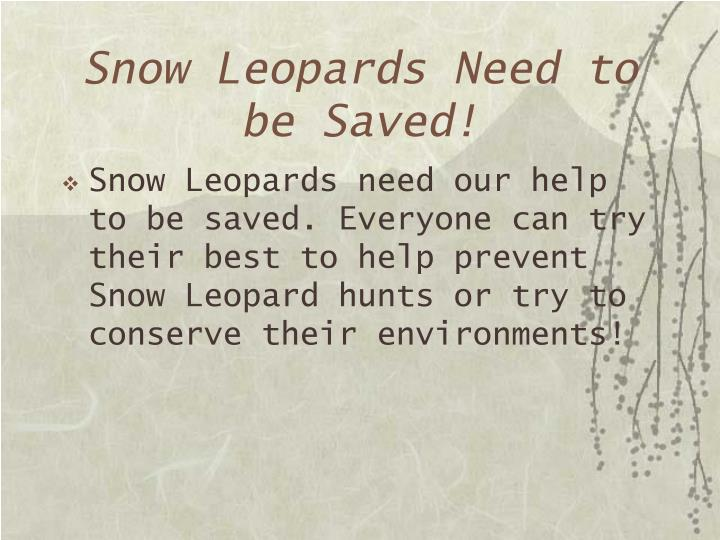 Snow Leopards Need to be Saved!