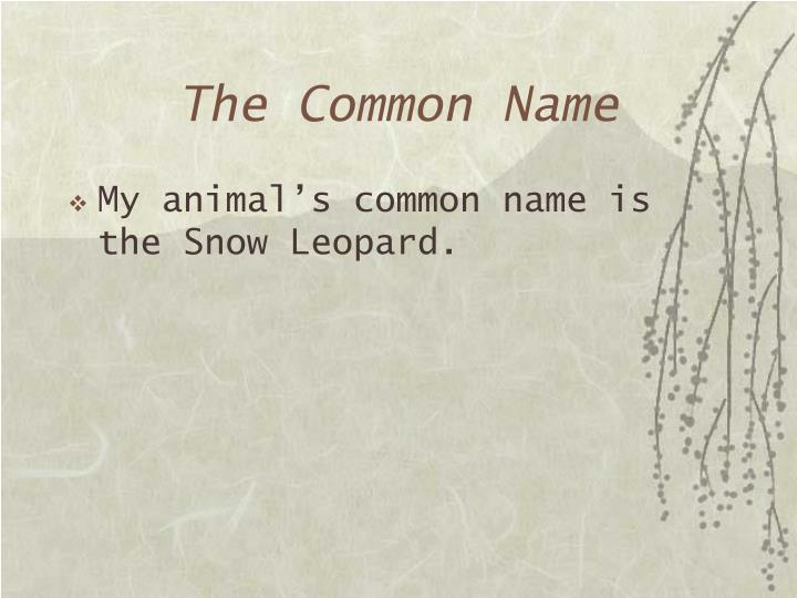 The Common Name