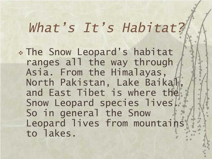 What's It's Habitat?