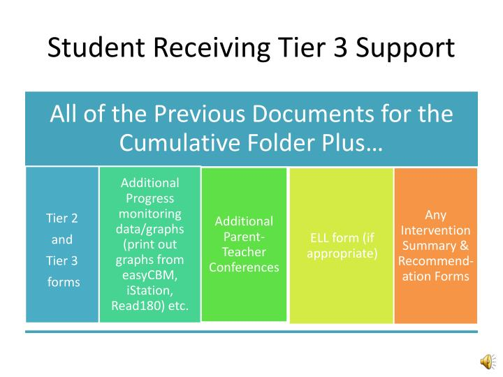 Student Receiving Tier 3 Support