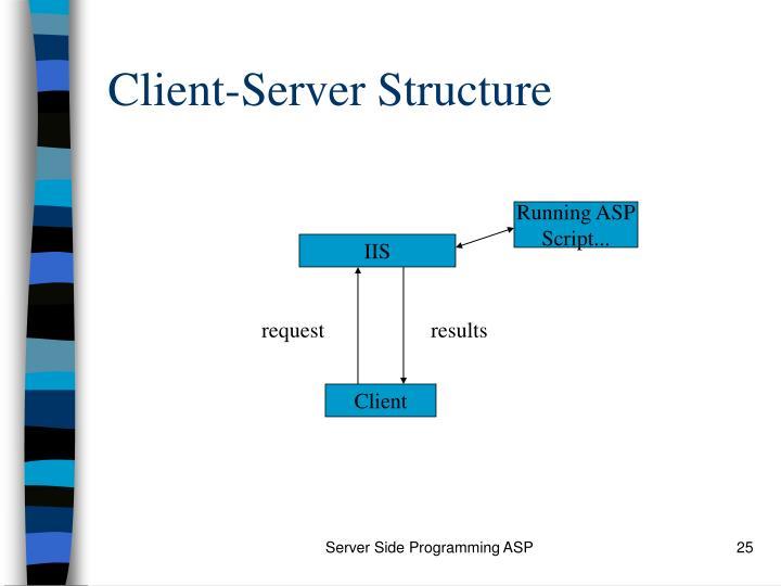 Client-Server Structure