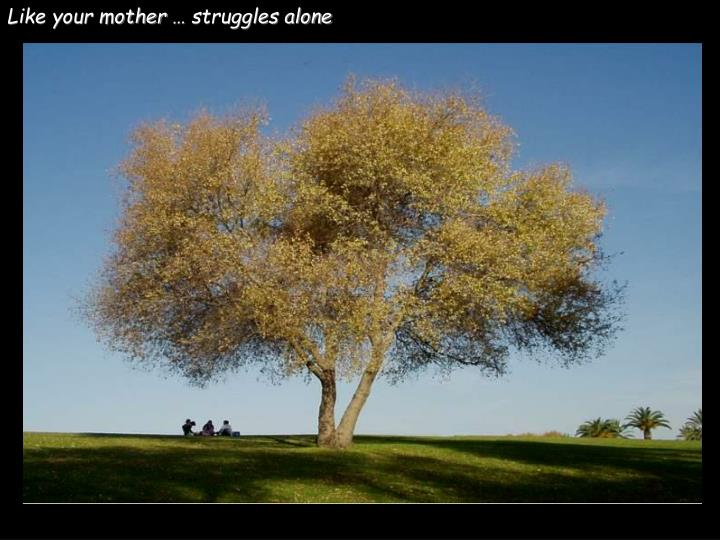 Like your mother … struggles alone
