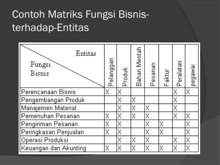 Contoh Matriks Fungsi Bisnis-terhadap-Entitas