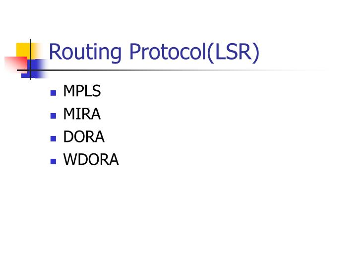 Routing Protocol(LSR)