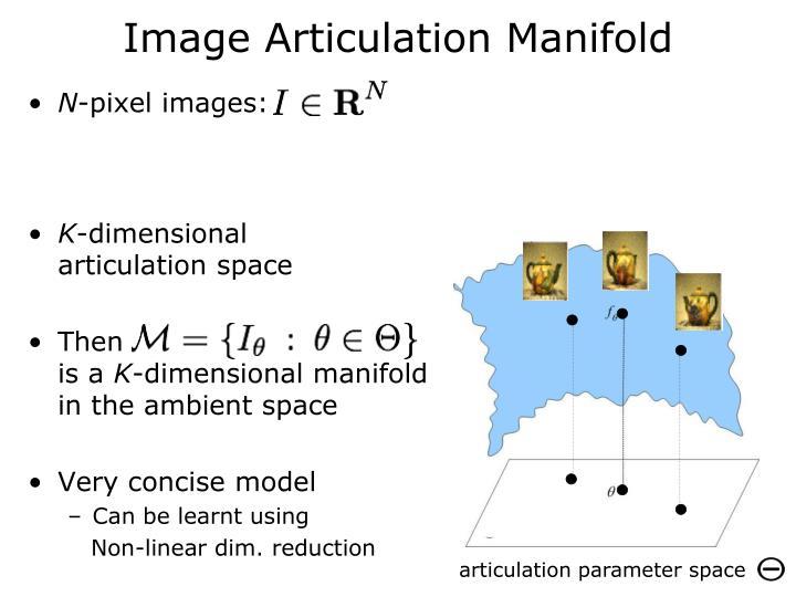 Image Articulation Manifold