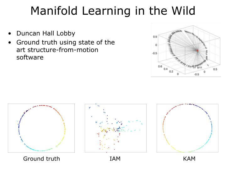 Manifold Learning in the Wild