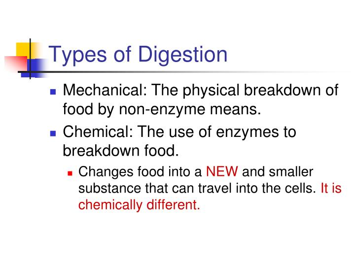 Types of digestion