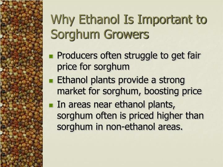 Why Ethanol Is Important to Sorghum Growers