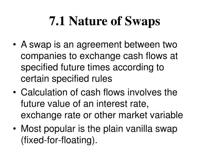 7.1 Nature of Swaps