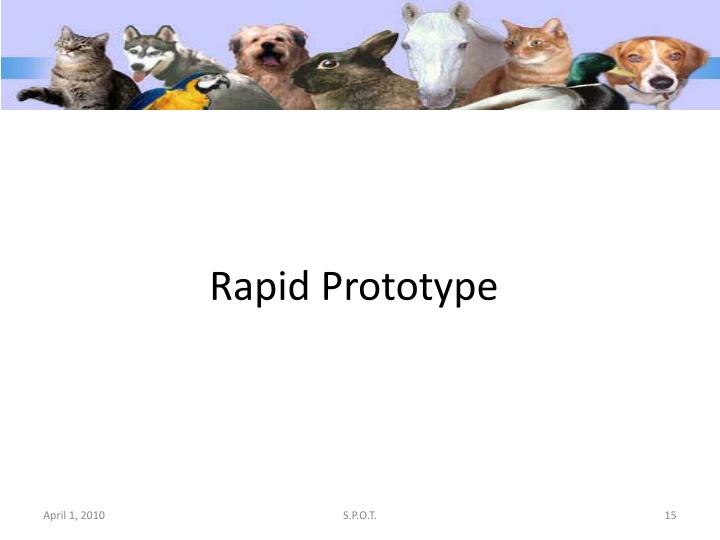 Rapid Prototype