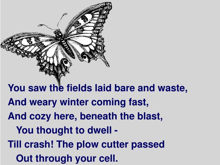 You saw the fields laid bare and waste,