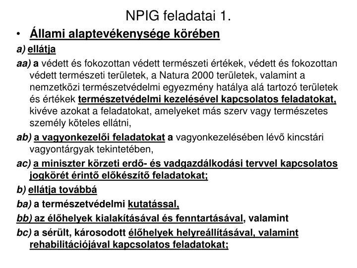 NPIG feladatai 1.