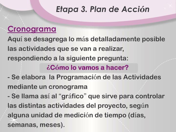 Etapa 3. Plan de Acci