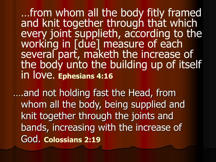 …from whom all the body fitly framed and knit together through that which every joint supplieth, according to the working in [due] measure of each several part, maketh the increase of the body unto the building up of itself in love