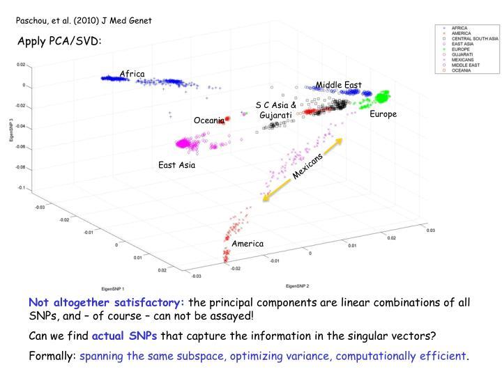 Paschou, et al. (2010) J Med Genet