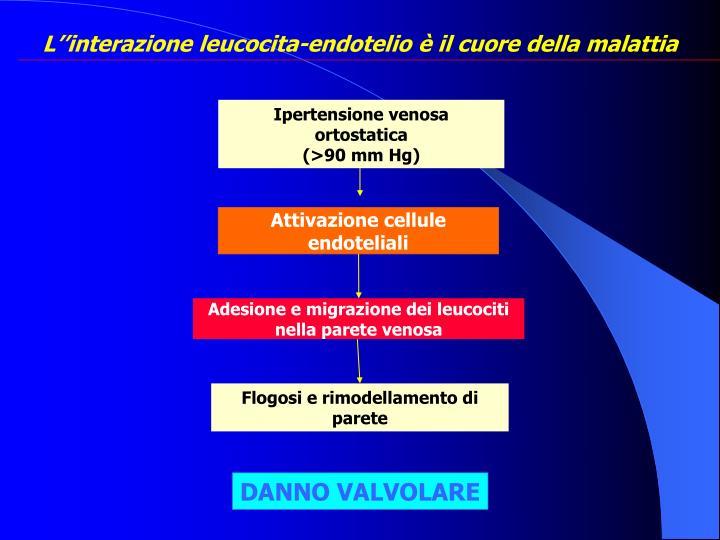 PPT - FUNZIONI DEL SISTEMA VENOSO PowerPoint Presentation..