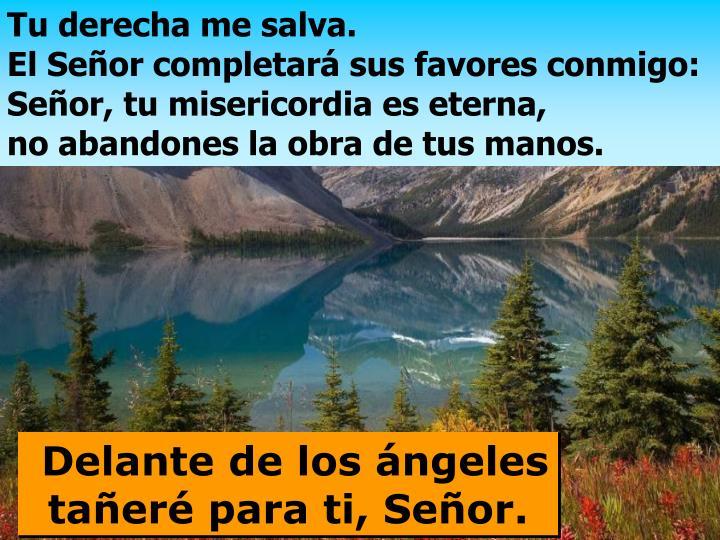 Tu derecha me salva.                                              El Señor completará sus favores conmigo: Señor, tu misericordia es eterna,                      no abandones la obra de tus manos.