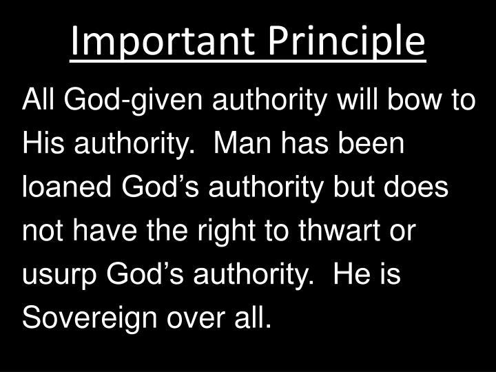 Important Principle