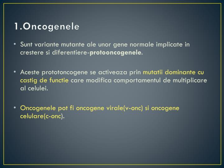 1.Oncogenele
